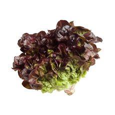 Салат в стакане дуболистный красный