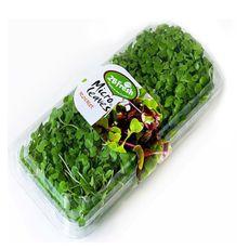 Кресс-базилик зеленый 40 гр.